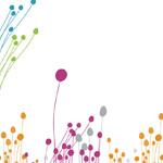 Подкормка роз — видео приложение садоводу