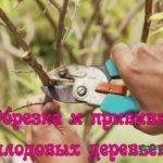 Обрезка и прививка плодовых деревьев (2013) DVDRip