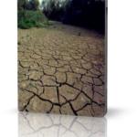 Повышенная кислотность почвы