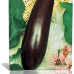 Выращиваем рассаду баклажана