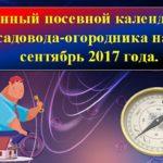 Лунный посевной календарь садовода и огородника на сентябрь 2017 года