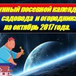 Лунный посевной календарь садовода и огородника на октябрь 2017 года