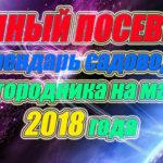 Лунный посевной календарь садовода и огородника на март 2018 года